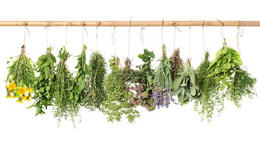 gyógynövények a fej öblítésére pikkelysömörre)