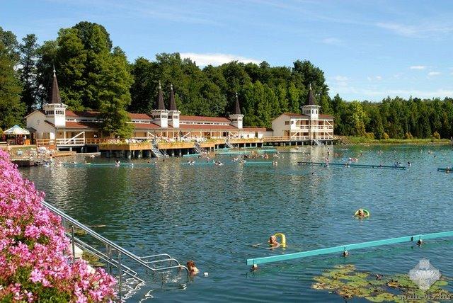 tó heviz pikkelysömör kezelése)