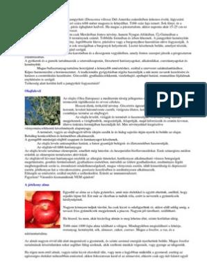 antibiotikum a pikkelysmr kezelsben)