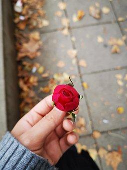 piros foltok a kezek fényképen)